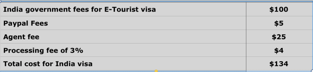 India visa : How I got my Indian visa in 2 days