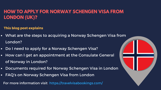 how to get a work visa in norway