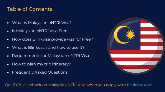 malaysia eNTRI visa contents