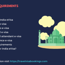 India e-visa requirements