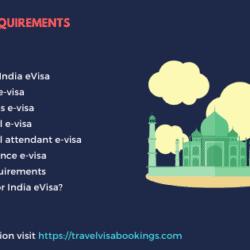 India e-visa requirements