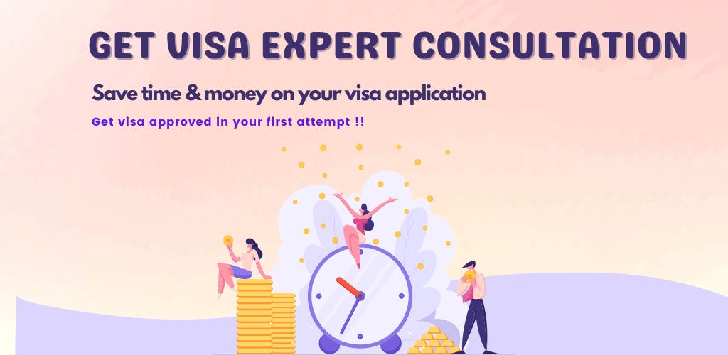 visa expert consultation